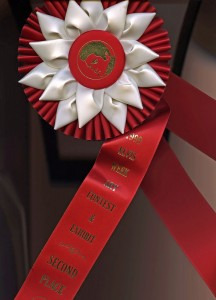 Elvis-prize-ribbon037-web